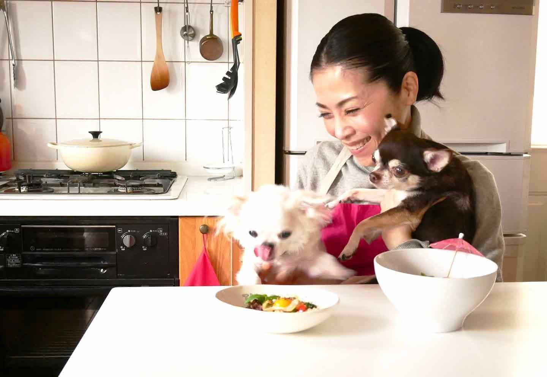 【わずか10分】簡単なのにヘルシー♡切って炒めるだけのガパオライスでわんちゃんと一緒にアジア旅行気分!
