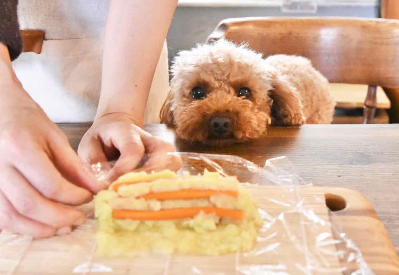愛犬と節分 恵方巻 具材を丸めていく