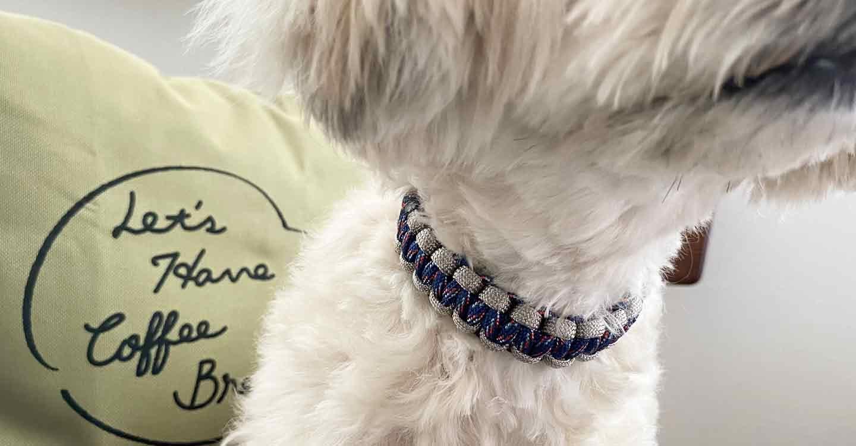 愛犬用パラコード編みの手作り首輪
