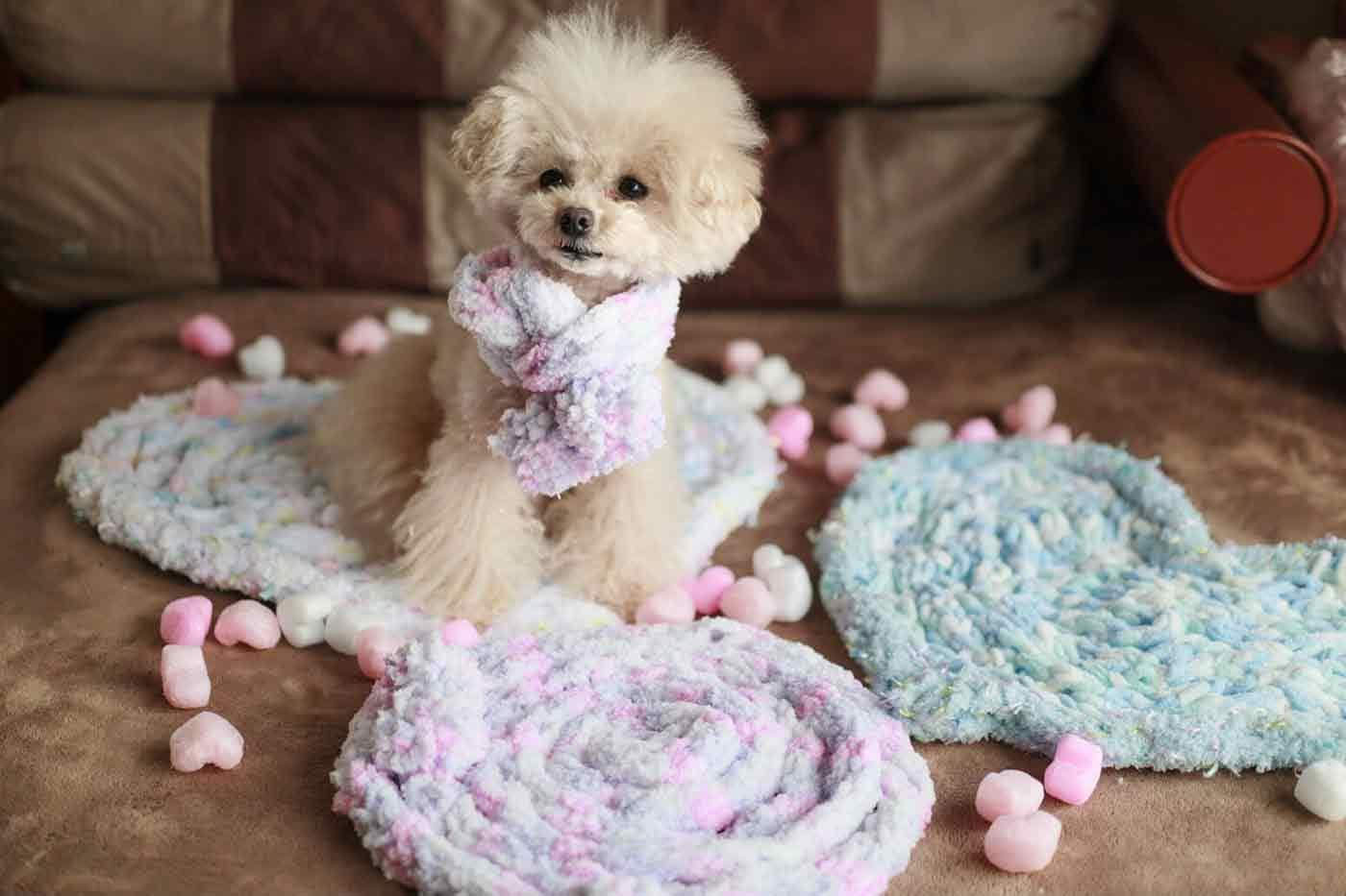 愛犬用指編み ポンポン付きマフラー