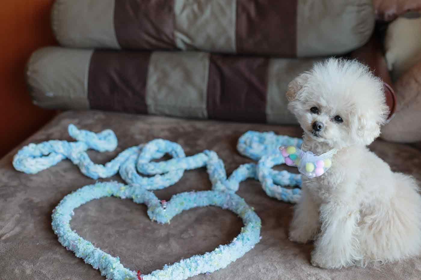 愛犬用指編み マフラー