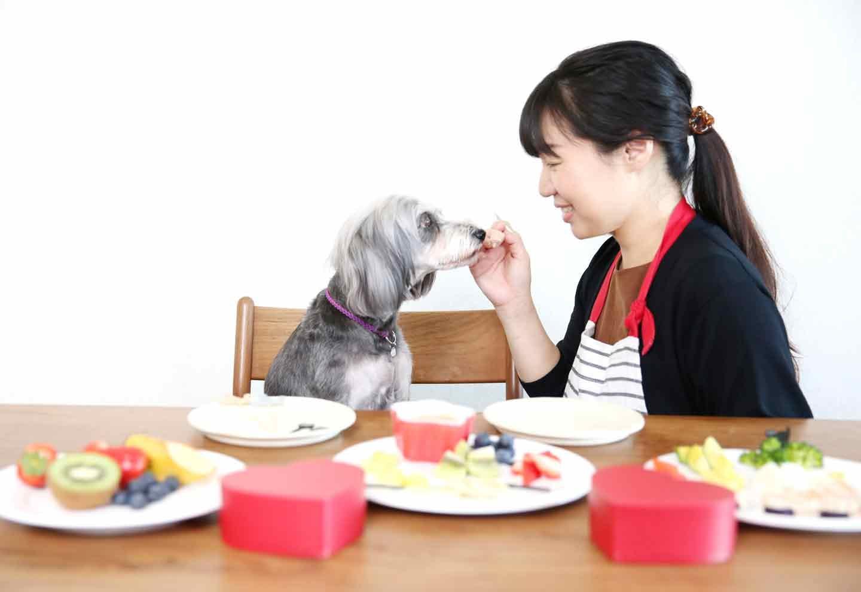 【超簡単バレンタイン】材料混ぜるだけ!お豆腐のチョコフォンデュ風プレートを愛犬に手作りしよう♪