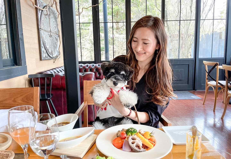 野菜がおいしいレストラン軽井沢 LONGING HOUSE 店内犬連れOK