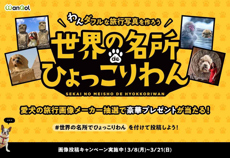 豪華景品も!? 「世界の名所でひょっこりわん」で愛犬の世界旅行写真を作って遊ぼう!