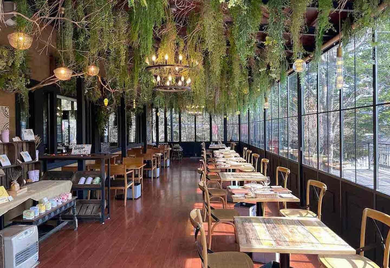 愛犬と楽しむ軽井沢のおしゃれスポット3選 野菜がおいしいレストラン軽井沢 LONGING HOUSE