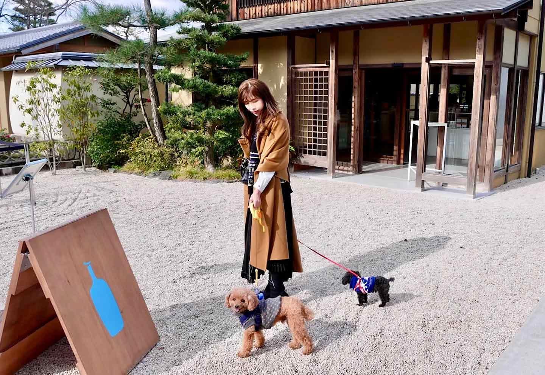 Blue Bottle Coffee 京都 犬OK