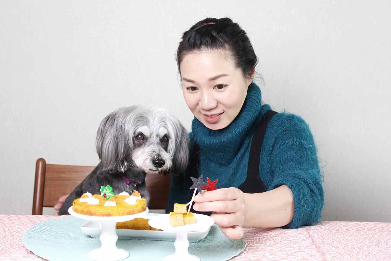 愛犬手作り健康ごはん にんじんケーキ 飼い主とパーティー