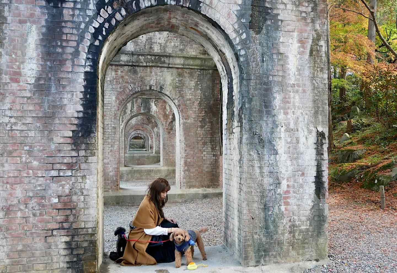 愛犬と南禅寺をお散歩 愛犬家の人気スポット