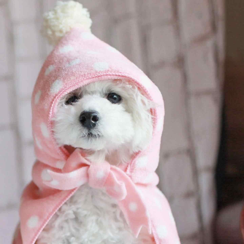 小型犬向け 愛犬用タオルフードポンチョ リボンをつける