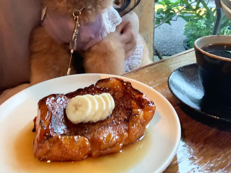 犬スタグラマーがオススメ ごはんも美味しいお店 タスヤード フレンチトースト