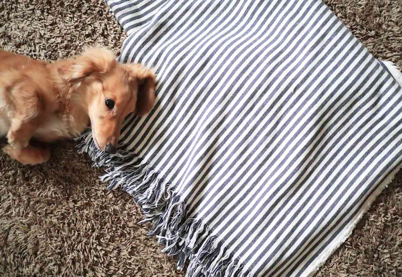 100均アイテム 愛犬用ティピーテント DIY ブランケット