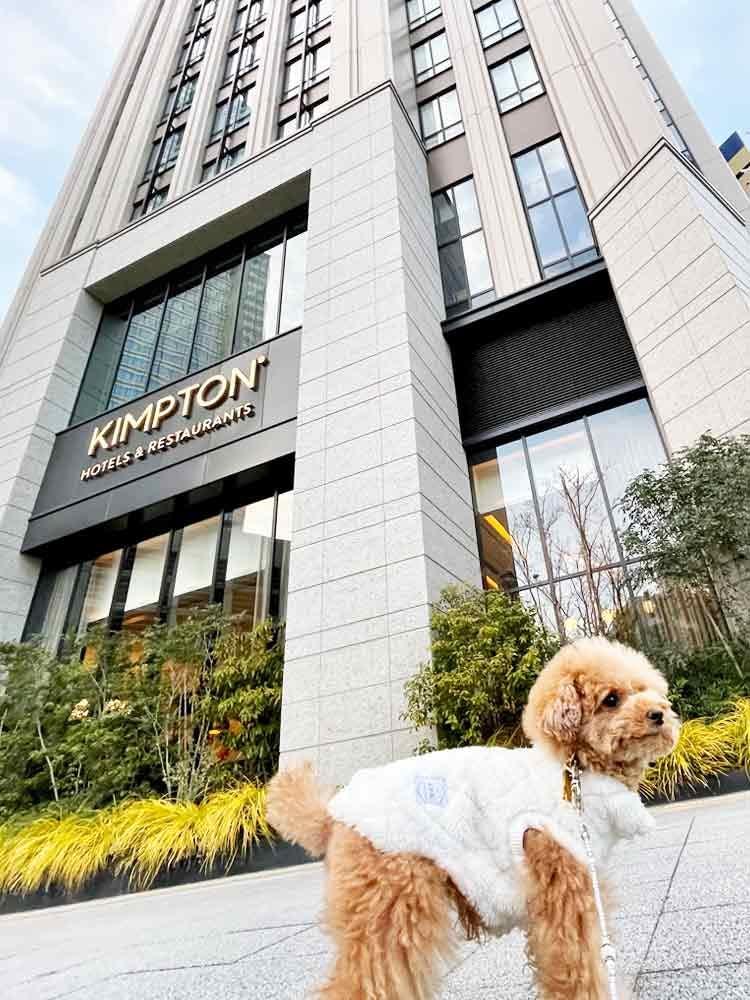 【お得なクーポン】全館同伴可能!キンプトン新宿東京では愛犬と贅沢なひとときを体験できる♪