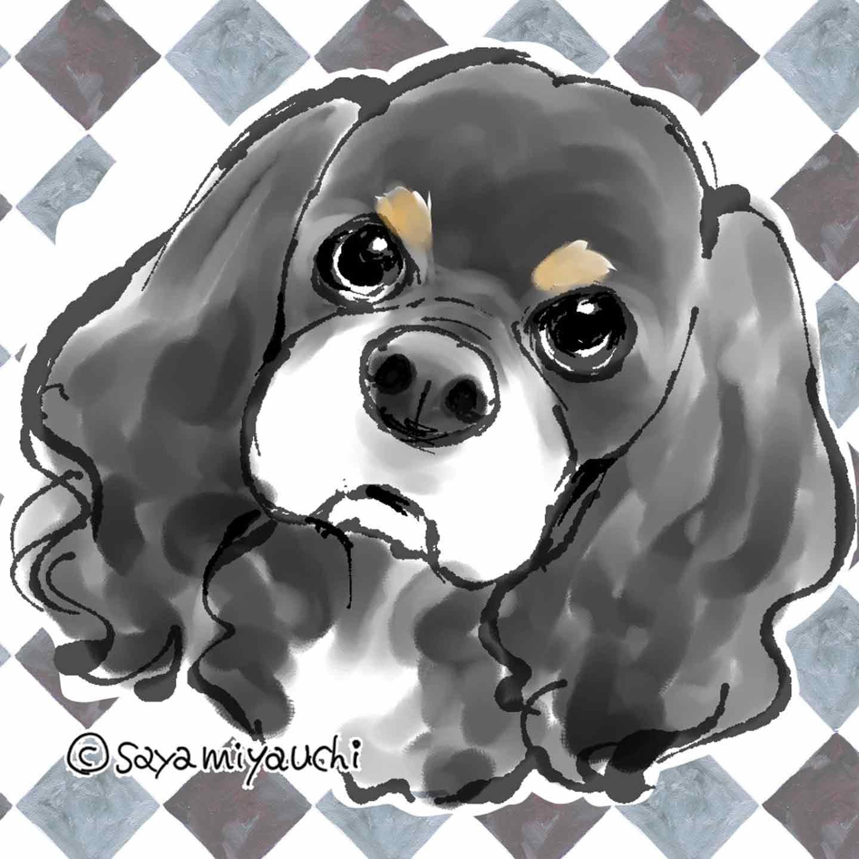 『DOG SIGNAL』 みやうち沙矢オリジナル愛犬似顔絵キャンペーン イメージ画像