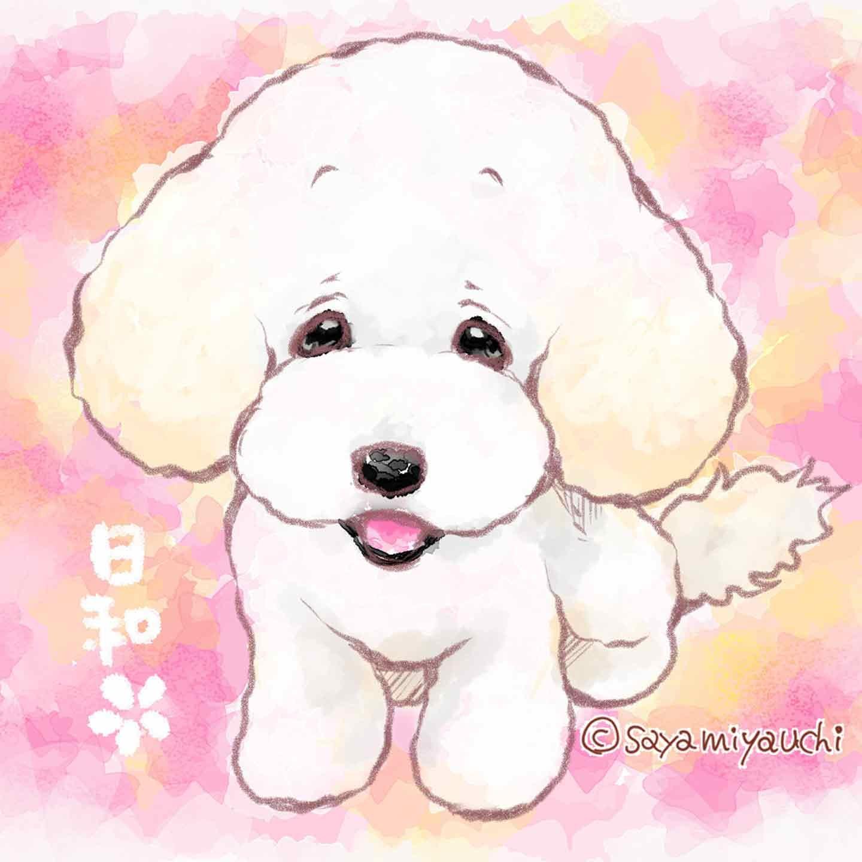 『DOG SIGNAL』 みやうち沙矢オリジナル愛犬似顔絵キャンペーン イメージ画像 トイプードル