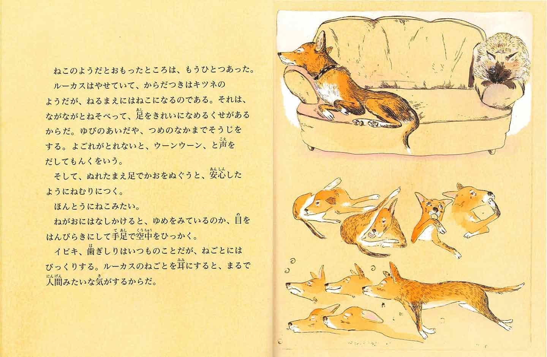 書店員が選ぶオススメ絵本3選 犬のルーカス