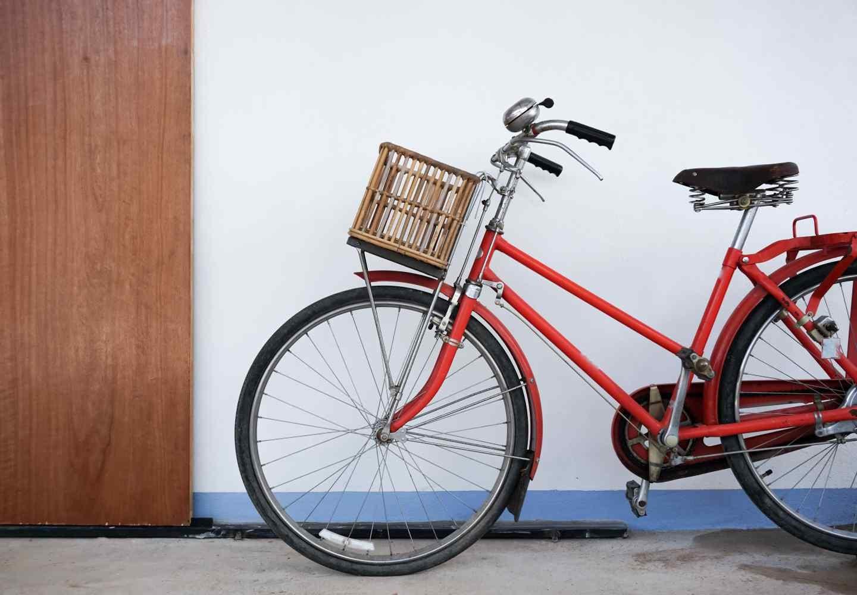 犬を自転車に乗せてもいい?