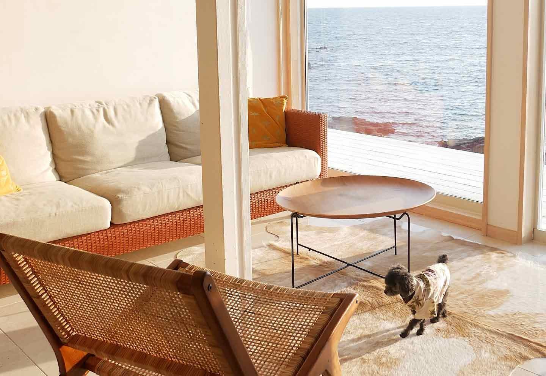 愛犬と泊まれる『THE HOUSE Moroiso secret beach』
