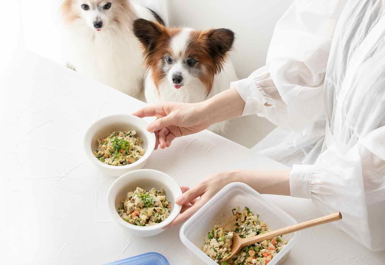 【時短ズボラ飯】切って混ぜてレンジに入れるだけ!動画つき愛犬用レンチンまぐろチャーハンの超簡単な作り方♪