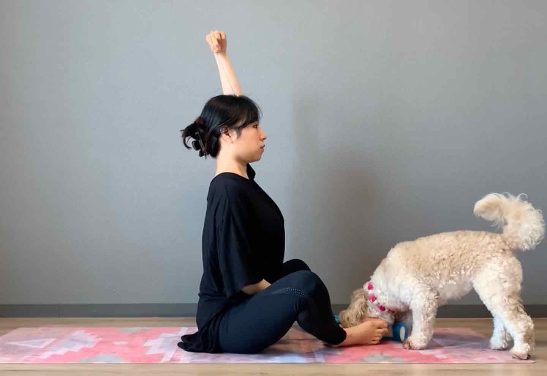 ドッグフィット 呼吸を整えるストレッチ 背筋を伸ばす