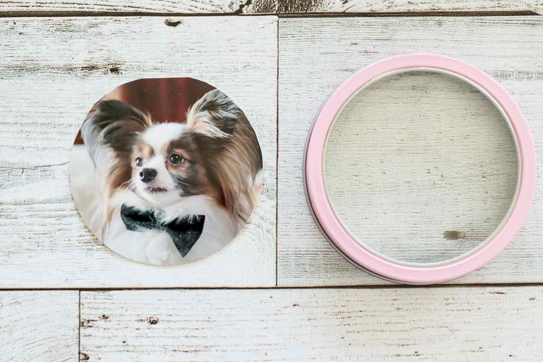 愛犬デザインのうちの子おやつ缶 写真を缶のサイズにカット