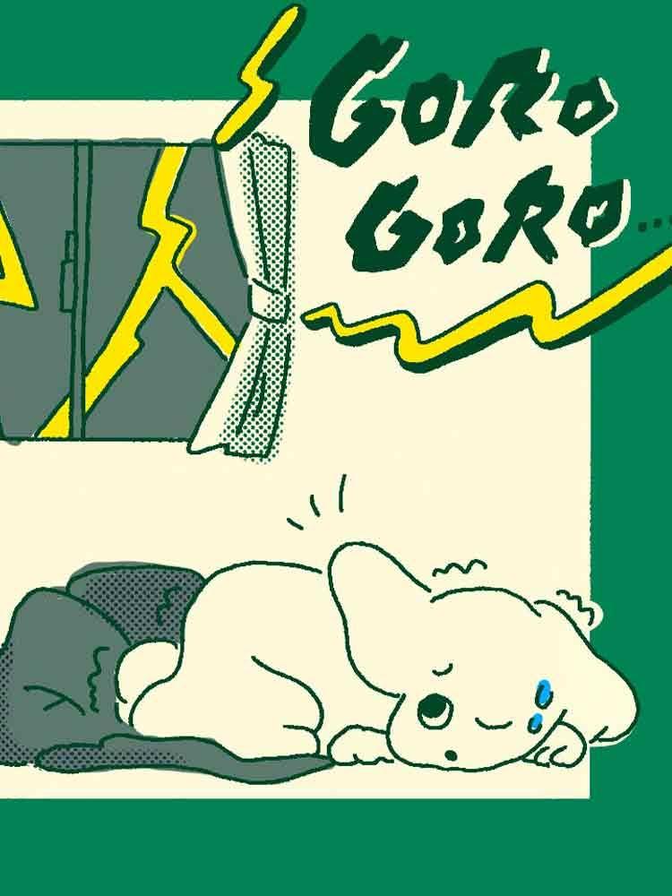 犬が雷を怖がる理由と対処法とは?逆効果になる飼い主のNG行動や留守番中はどうすればいいかについて解説【獣医師監修】