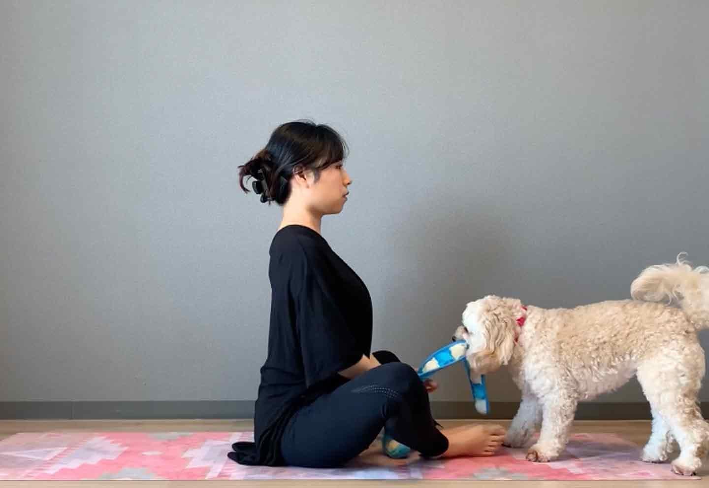 ドッグフィット 呼吸を整えるストレッチ 両足裏を合わせて座る