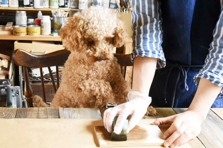 愛犬用「収納つき手作り連絡ボード」の作り方 ニスを重ね塗り