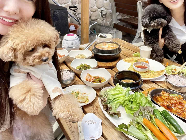 愛犬と本格韓国ランチ『テ〜ハミング』