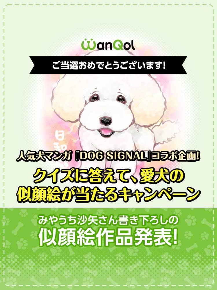 第1回『DOG SIGNAL』とのコラボキャンペーン当選者発表!
