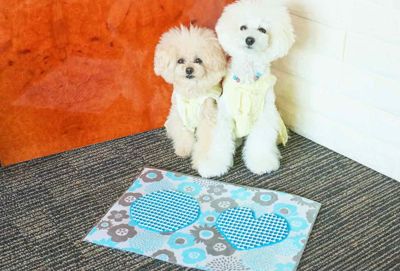 防水仕様の愛犬用ランチョンマットの作り方 布をカット