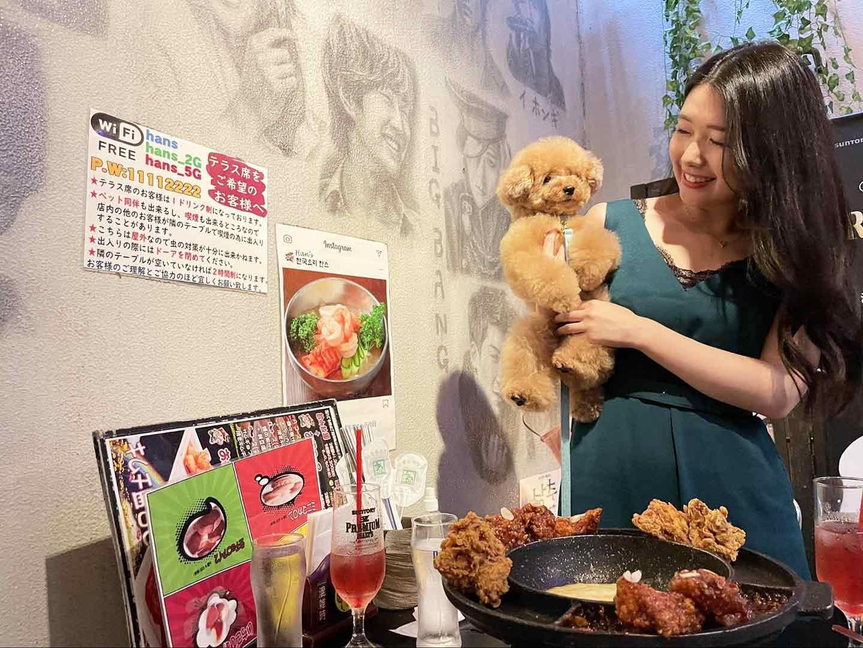 愛犬と韓流を感じながら食べられる『ハンス』 テラス席