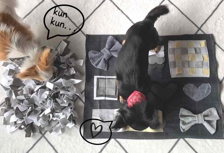 愛犬の手作りノーズワークマットの反応