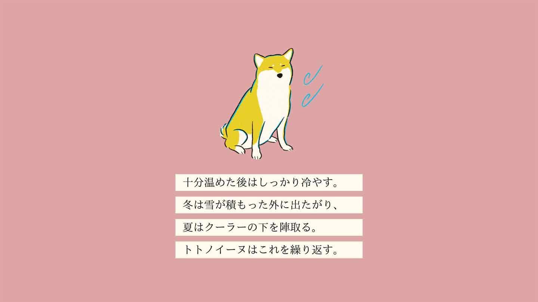 トトノイーヌの生態《変な犬図鑑001》
