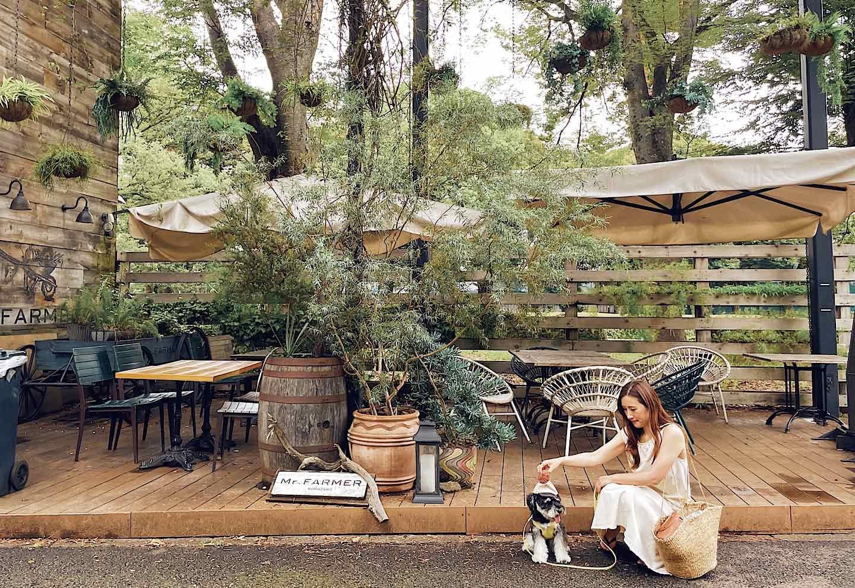 【世田谷】愛犬と行ける駒沢公園周辺のカフェ3選 『Mr.FARMER 駒沢公園店』