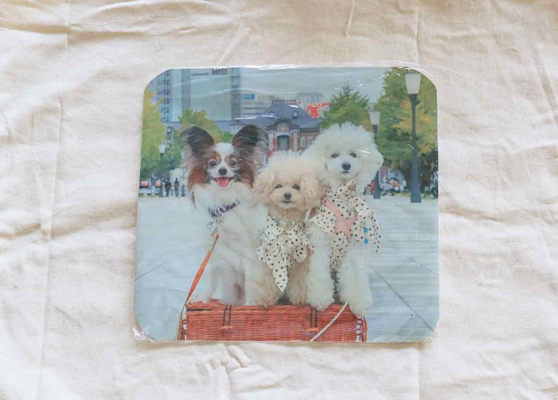 愛犬の写真をラップで覆って、アイロンでバッグに貼り付ける