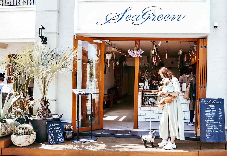 【由比ヶ浜】大型犬も大歓迎!ハワイ風カフェ『シーグリーン 鎌倉店』