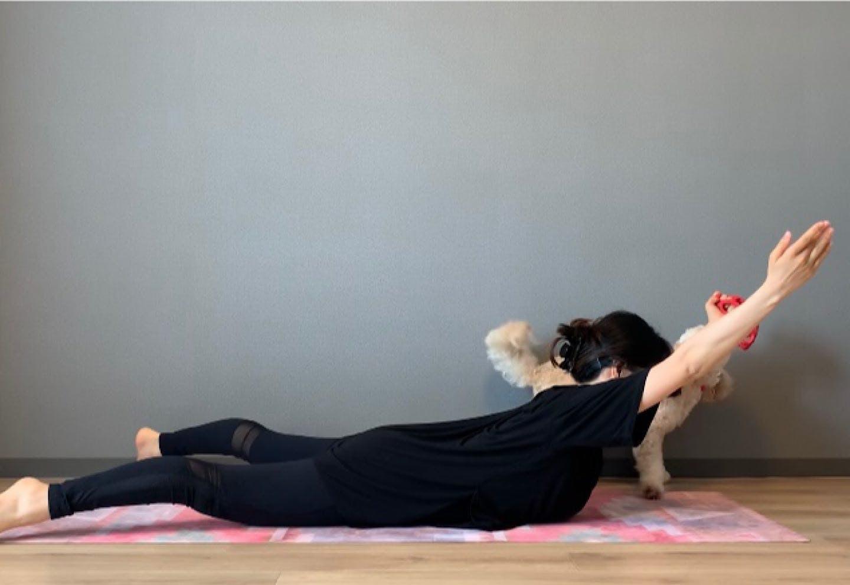 背中引き締めドッグフィット 肩甲骨周りをほぐして鍛える、飛行機エクササイズ