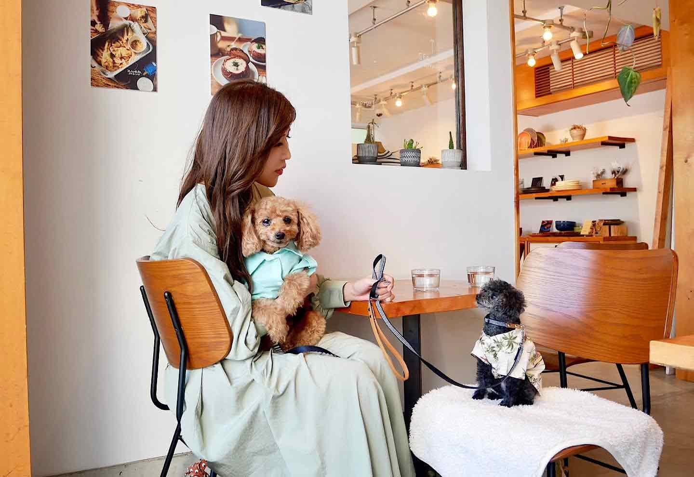 【由比ヶ浜】大型犬も大歓迎!ハワイ風カフェ『シーグリーン 鎌倉店』 大型犬も歓迎
