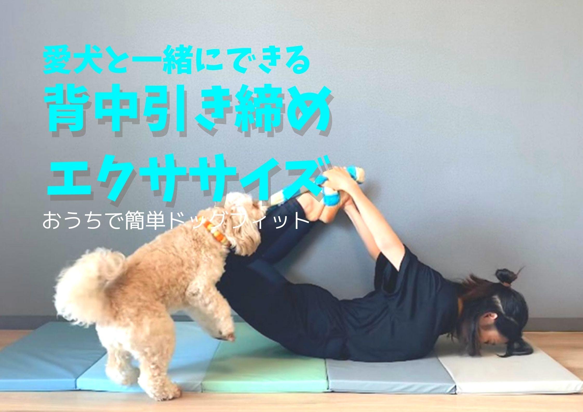 【動画つき】愛犬と背中引き締め♪たったの15分で気分も見た目も肩こりもスッキリする3つのエクササイズ!
