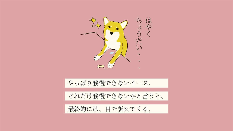ガマンデキーヌの生態《変な犬図鑑003》