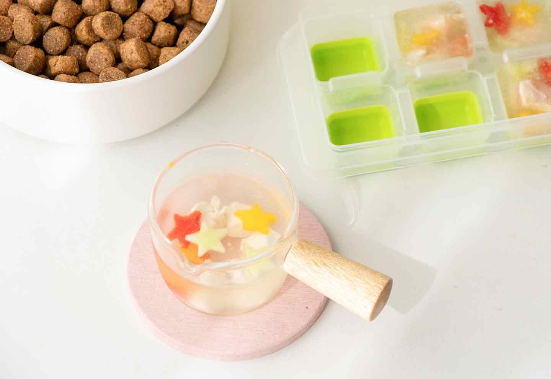 愛犬七夕レシピ 愛犬用鶏ささみと夏野菜のスープの作り方 盛り付け