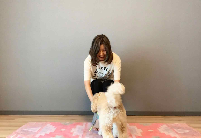 空気椅子ドッグフィット 愛犬とおもちゃの引っ張りっこ