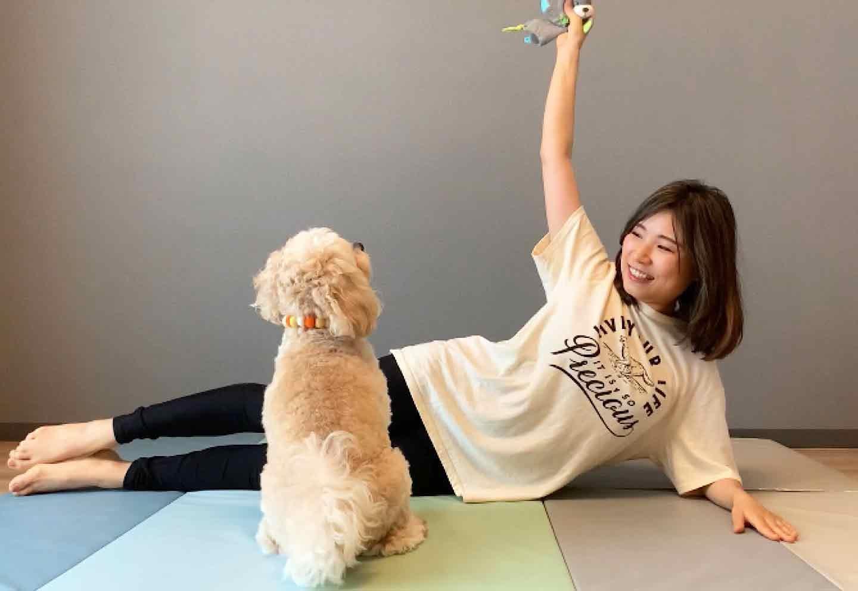 愛犬の脚力を鍛える、脚パカドッグフィット