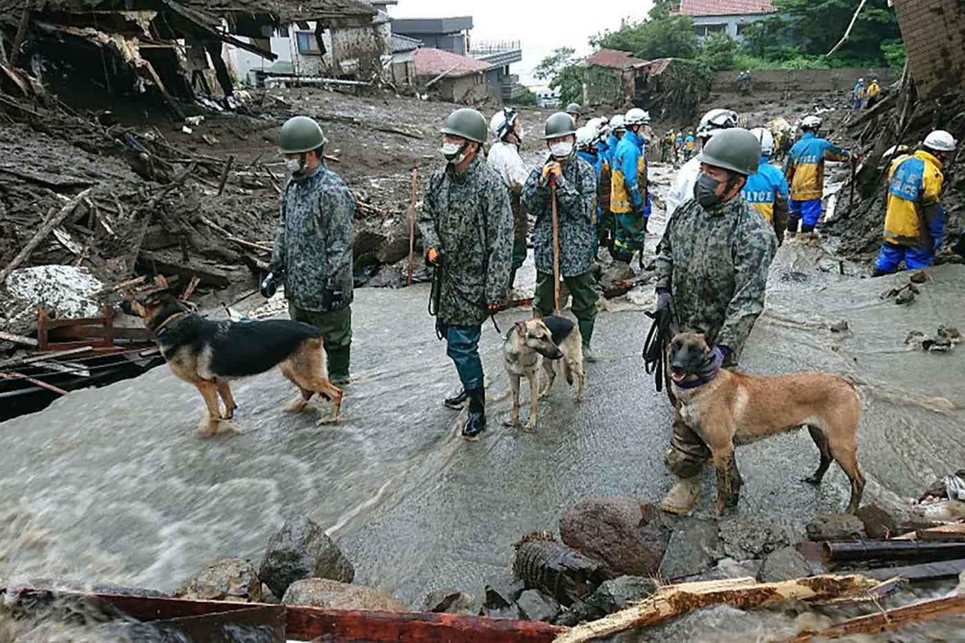 熱海の被災地で捜索活動をする災害救助犬