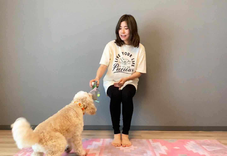 愛犬の後ろ足を鍛える、空気椅子ドッグフィット