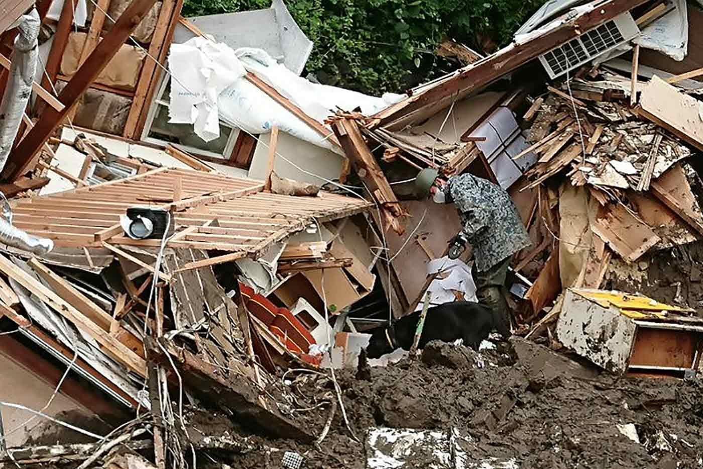 倒壊家屋の中を捜索する災害救助犬(レスキュードッグ)