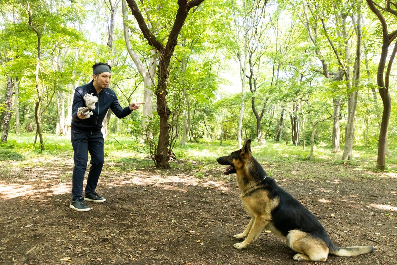 かじりんボーンで遊ぶ犬が大好きなライターの竹内とジャーマン・シェパードの警察犬パクくん