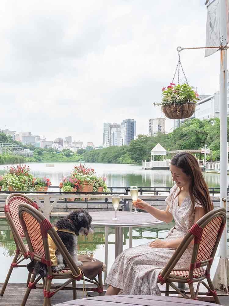 【都内】愛犬と行ける水辺カフェ3選!夏でも愛犬とお出かけしやすい涼しげスポット♪