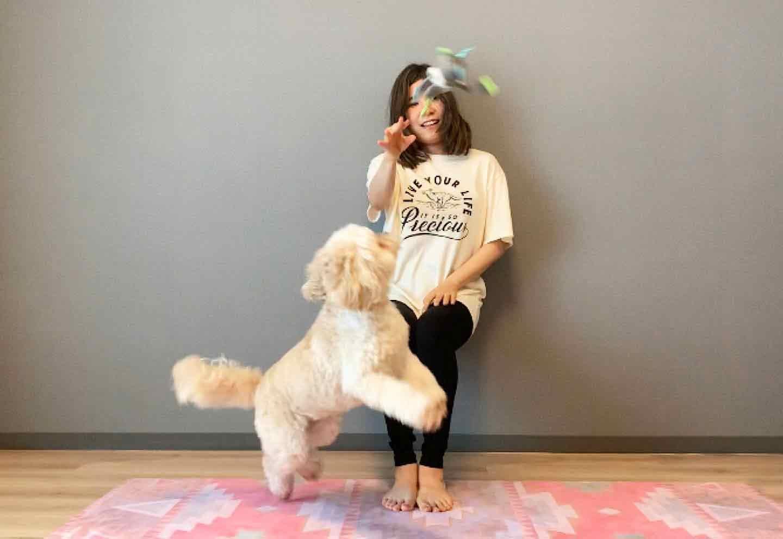 空気椅子ドッグフィット おもちゃを投げて愛犬に持って来させる
