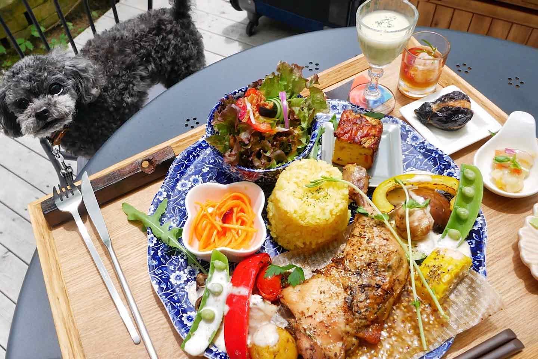 【名古屋周辺】愛犬同伴可能なガーデンカフェ3選!愛犬とおしゃれなテラスでのんびり過ごせるスポット♪